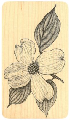 """{Single Count} Unique & Custom by 2 Inches) """"Mother Nature, Wild Growing, Botanical Dogwood"""" Rectangle Shaped Genuine Wood Mounted Rubber Inking Stamp Dogwood Trees, Dogwood Flowers, Coffee Table Flowers, Breast Cancer Art, Dogwood Flower Tattoos, Altar Design, Embroidery Flowers Pattern, Sweet Tattoos, Friend Tattoos"""