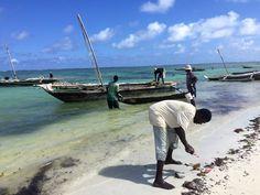 Diani Beach, Kenya, Boat, Dinghy, Boats, Ship