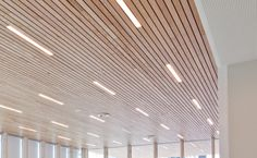 Slatted timber suspended ceiling.