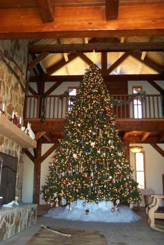 """A magnificent 15-ft Balsam Hill Vermont White Spruce Christmas Tree from customer """"Lyle the farmer"""" in Saint David, AZ"""