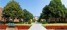 Radford University | Virginia | Best in the Southeast
