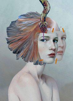 Collage KOI 2014, Waldemar Strempler