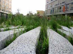 66 Square Feet: The Highline in late July