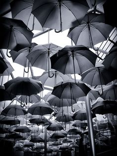 umbrella / black & white / art @✔ b l a c k w h i t e