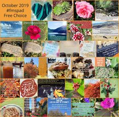 This month, I chose to do photos with inspiring words. My Father's World, Photo A Day, October, Collage, Faith, Free, Inspiration, Biblical Inspiration, Collages