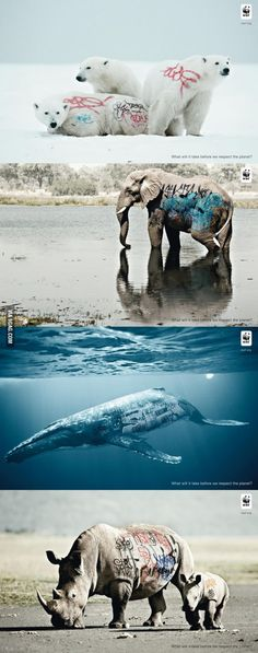 WWF ad: what does it take before we respect the planet? - Creative WWF ad: what does it take before we respect the planet? – -Creative WWF ad: what does it take before we respect the planet? - Creative WWF ad: what does i. Creative Advertising, Advertising Design, Advertising Campaign, Ads Creative, What Is Fashion Designing, Amazing Animals, Plakat Design, Poster Design, Graphic Design