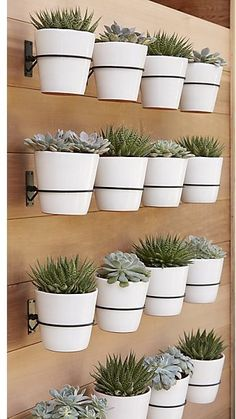 Wall planter ideas. Create your own wall planter for your deck, patio or porch.#planter #patio #wallplanter #ideas #ad