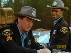 Sgt. Skinner and Officer Sweet, In The Heat of The Night