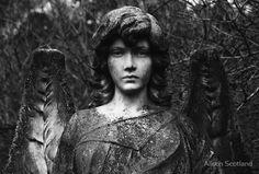 Angel, cemetry Logie Kirk, Central Scotland.