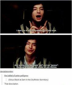 Funny thing is, Ezra Miller plays Credence Barebone in fantastic beasts Hogwarts, Slytherin, Harry Potter Jokes, Harry Potter Fandom, Drarry, Jily, Credence Barebone, Fangirl, Film Anime