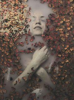 Fine Arts Photography by Bartosz Slevinaaron Madej