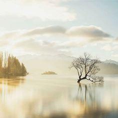 Lake Wanaka (New Zealand) - Johan Lolos Photography Photographer Needed, Travel Photographer, Wanaka New Zealand, Lake Wanaka, Destinations, Thing 1, World Heritage Sites, Land Scape, Adventure Travel