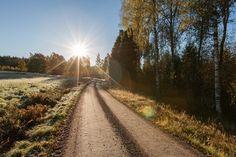 Morgonfrost - första höstfrosten
