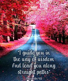 .PROVERBS  4:11