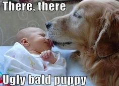 Sorry, I couldn't help but pin this.  The baby is not ugly, I just thought the dog is very cute.