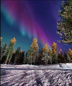 Northern lights over Ivalo,Finland
