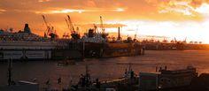 Trauringe mit ökologischem Gold aus Hamburg mit gutem Beratungsangebot