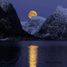 Gorgeous Moonlight