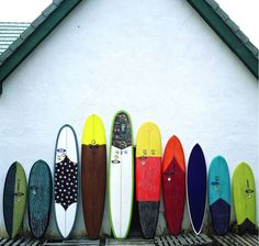 Lineup ready to hit the surf