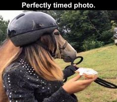 Afternoon Funny Meme Dump – 33 Pics Time Pictures, Funny Pictures, Perfect Timed Pictures, Angle Parfait, Forced Perspective, Camera Angle, Perfectly Timed Photos, Reverse Image Search, Long Faces