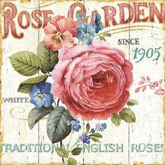 Lisa Audit: Rose Garden I Fertig-Bild 45x45 Landhaus Shabby Blumen Wandbild Deko | eBay