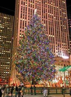 Christmas feeling at Rockefeller Plaza, NYC