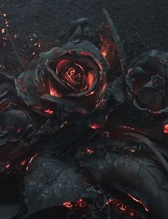 As part of a reference photoshoot for an illustration project by Warsaw-based creative studio Ars Thanea, a bouquet of roses was set on fire and photographed as they smoldered in the dark. Dark Fantasy, Fantasy Art, Lizzie Hearts, Art Noir, Arte Obscura, Gothic Art, Dark Gothic, Creepy, Cool Art