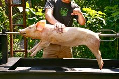 Want to learn how to spit-roast a whole pig? Read all about it here. About the author: After graduating from MIT, J. Kenji Lopez-Alt spent many years as a chef, recipe developer, writer, and editor in Boston. He now lives...
