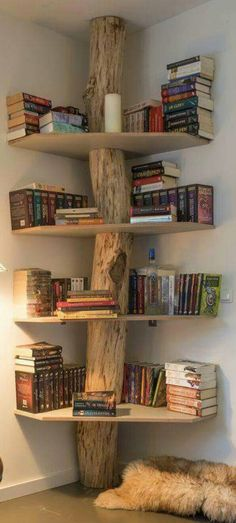 (image only) Tree trunk with corner shelves