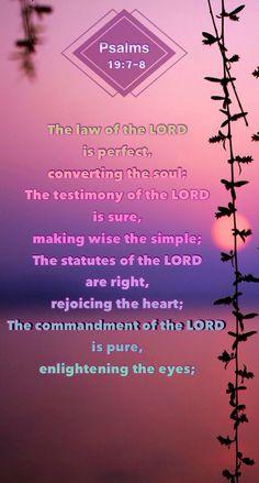 Psalms 19:7-8