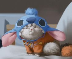 If you look closer, it's a picture of an extremely grumpy Mochi dressed up as Stitch from Lilo & Stitch.