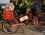 Desde 2011 a Anouk se dedica ao desenvolvimento de bolsas e acessórios adaptáveis às biciletas feitos de forma 100% artesanal no Rio de Janeiro.
