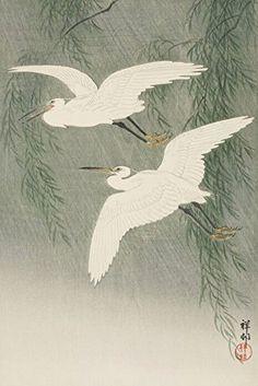 "Japanese Art Print ""White Herons and Willow"" by Ohara Koson. Shin Hanga and Art Reproductions http://www.amazon.com/dp/B00XX7CA0A/ref=cm_sw_r_pi_dp_ioctwb0EJ5X1Q"