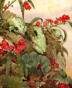 Vintage Frog Print