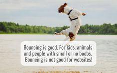 How to reduce your bounce rate - hellomedia Bounce Rate, Medium Blog, Open Window, Things That Bounce, Digital Marketing