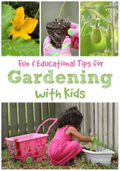 Fun  Educational Tips for Gardening with Kids
