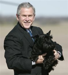 Man's best friend: Former President George W Bush, pictured carrying his dog Barney across the airport tarmac in Waco, Texas, today paid tribute to the Scottish Terrier who passed away in February Greatest Presidents, American Presidents, Us Presidents, Scott Terrier, Bush Family, Dead Dog, Family Dogs, Westies, Famous Faces