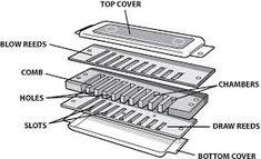 Αποτέλεσμα εικόνας για harmonica inside