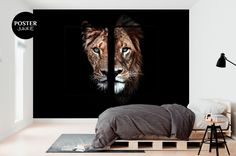 Lion Poster, Lion And Lioness, Dog Stories, Dark Colors, Most Beautiful Pictures, In The Heights, Sweet Home, Wallpaper, Showroom
