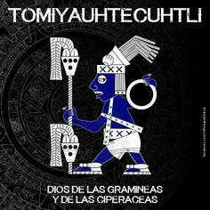 Dioses aztecas: Tomiyauhtecuhtli Aztec Religion, Age Of Mythology, Aztec Symbols, Mexican Artwork, Ancient Aztecs, Aztec Culture, Aztec Art, Chicano Art, Japan Art