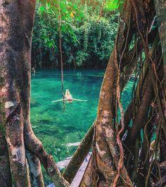 Eden on the River, Vanuatu by jewelszee