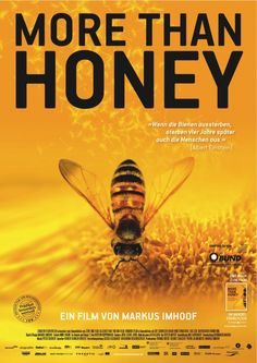 more-than-honey film review