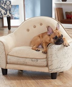 French Script Chair Pet Bed