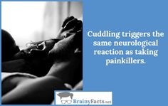 Love Facts : Cuddling | did you know