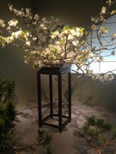 生け花と中国家具 mandarin's diary