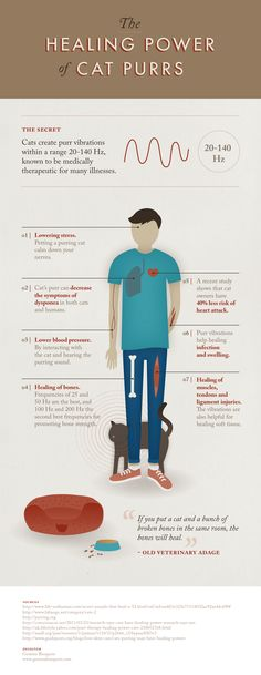 Cats create purr vibrations within a range 20-140 Hz, known to be medically therapeutic for many illnesses. Hmmm...