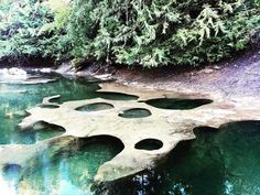 Exploring this beautiful island again. Found the Oyster River Potholes! Victoria Vancouver Island, Vancouver Seattle, Places To Travel, Places To See, Summer Vacation Spots, Vacation Travel, Vacations, Lake George Village, Geography