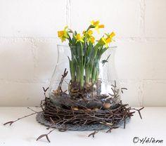 Birkenkranz + Narzissen Glass Vase, Easter, Floral, Plants, Angels, Inspiration, Home Decor, Food, Spring