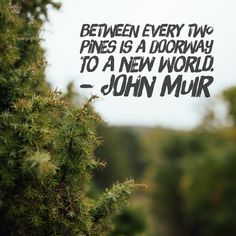 Hope everyone had an adventure on weekend and made time to explore the great outdoors!   #JohnMuir #PNW #hiking #backpacking #getoutside #exploremore