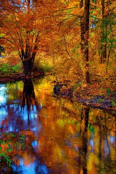 Fall foliage reflected in the West River, Guilford, CT